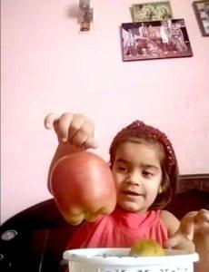 evs. topic fruits_6